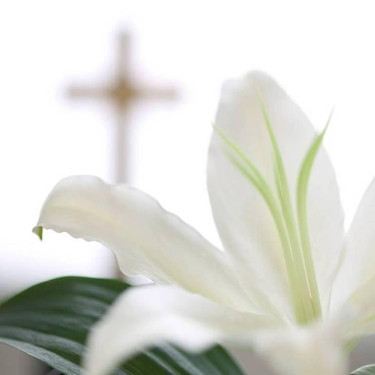 resurrection, Jesus, Easter, hope, life, change, perspective