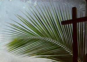 palm Sunday, Easter, joy, hope, love, peace, serenity