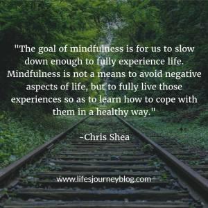 mindfulness-goal